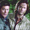SPN814BoysIcon