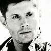 SPN823DeanInSunIcon02