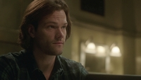 SPN1315_HLCaps_0031