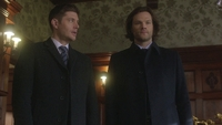 SPN1315_HLCaps_0121