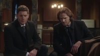 SPN1315_HLCaps_0201
