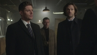 SPN1315_HLCaps_0635