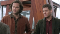 SPN1315_HLCaps_0670