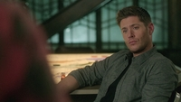 SPN1315_HLCaps_0684