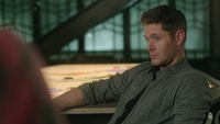 SPN1315_HLCaps_0730