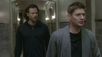 SPN1506_HLCaps_0138