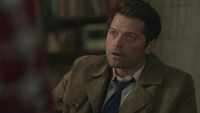 SPN1313_HLCaps_0072