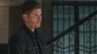 SPN1313_HLCaps_0131