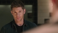 SPN1313_HLCaps_0142