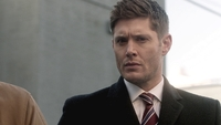 SPN1313_HLCaps_0221