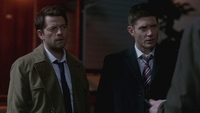 SPN1313_HLCaps_0362