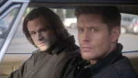 SPN1313_HLCaps_0482