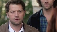 SPN1313_HLCaps_0514