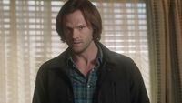 SPN1313_HLCaps_0562