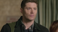 SPN1313_HLCaps_0577