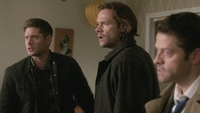 SPN1313_HLCaps_0632
