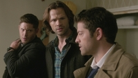 SPN1313_HLCaps_0654