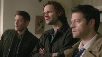 SPN1313_HLCaps_0665