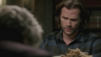 SPN1313_HLCaps_0760