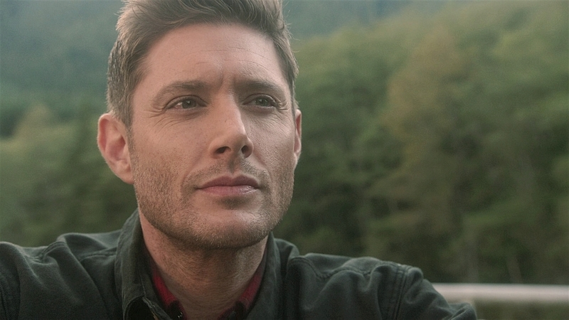 SPN1520_HLCaps_1088