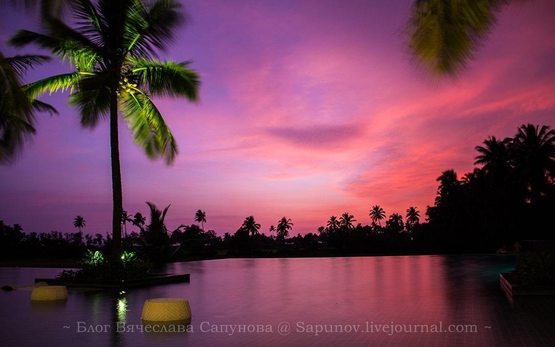 Alila Diwa Goa - Infinity Pool13