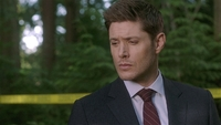 SPN1504_HLCaps_0459