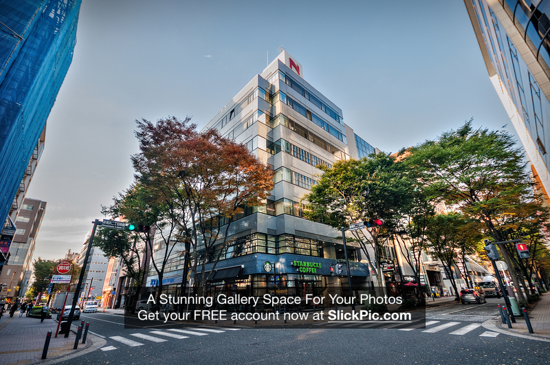 Tokyo_Trip_2017_329