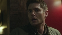 SPN1505_HLCaps_0494