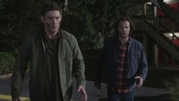 SPN1505_HLCaps_0774