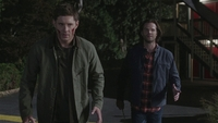 SPN1505_HLCaps_0802