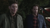 SPN1505_HLCaps_0815