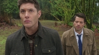 SPN1314_HLCaps_0227