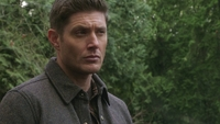 SPN1314_HLCaps_0239