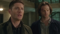 SPN1314_HLCaps_0787