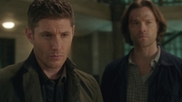 SPN1314_HLCaps_0799