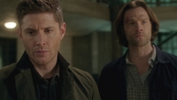 SPN1314_HLCaps_0825