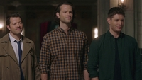 SPN1512_HLCaps_0599