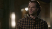 SPN1512_HLCaps_0613