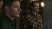 SPN1512_HLCaps_0676
