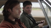 SPN1301_HLCaps_0134