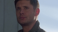 SPN1301_HLCaps_0501