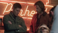 SPN1302_HLCaps_0213